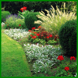 Pflegeleichter Garten, mit Pflanzen die Sonne bevorzugen