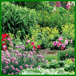 Sommerbeet mit Stauden in zarten Farben