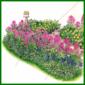 Frühlingsbeet im Schatten, dezente Farben für schattige Stellen