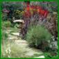 Gartenweg mit vielen Pflanzen zum Staunen