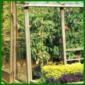 Gewächshaus, Pflanzen züchten, die sonst nicht gedeihen