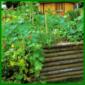 Kompost wertvolle Humuserde für den Garten