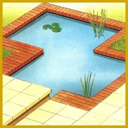 Miniteich im Garten, was Sie beachten sollten!