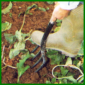 Problemböden im Garten, Lehmböden, Sandböden, Kalkböden