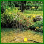 Rasen Wässern mit den richtigen Methoden