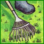 Rasen pflegen, verbessern Sie das Aussehen des Rasens