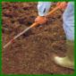 Rasensamen aussäen und Boden vorbereiten