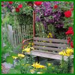 Ruheplatz im Garten, lauschig und gemütlich