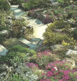 Steingarten anlegen