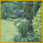 Zierrasen und Blumenwiese, Punkte die Sie beachten sollten