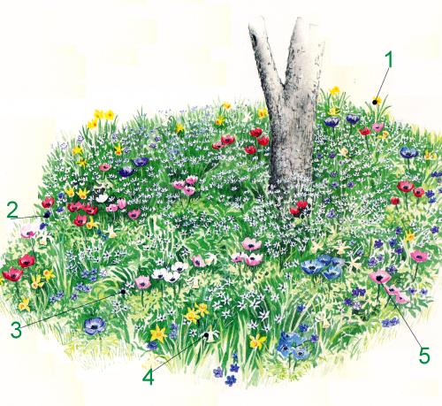 Blumenbeete unter Bäumen