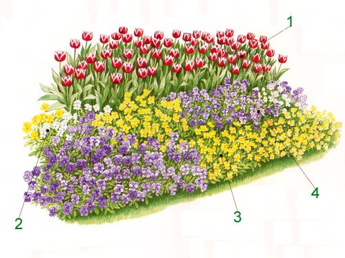 Blumen im Beet