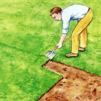 Gras und Unkraut entfernen