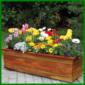 Frühlingsblumenkasten, ein farbenfroher Blickfang