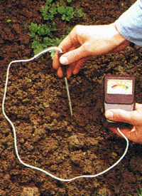Gartenbodenprüfung