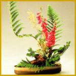 Ikebana die Kunst des Blumensteckens