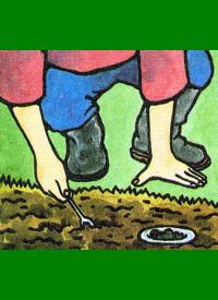 pH Wert des Gartenbodens