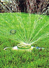 Rasen Wässern