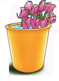 Schnittblumenpflege